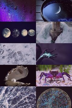 cancer horoscope   Tumblr Witch Aesthetic, Aesthetic Collage, Cancer Horoscope, Zodiac Cancer, Stay Wild Moon Child, Cancer Moon, Cancerian, Wiccan, Witchcraft