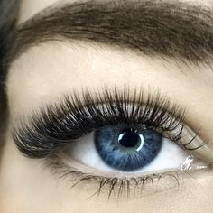 Our students never cease to amaze us!  This beautiful Volume Set was produced at 2 Day Mega Volume Lash Mastery at our @brisbanelashes academy back in August  #lashjoy #studentlashwork #megavolume