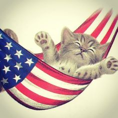 """sultansportal: """" #happy #4th of #July #independence #day #american """""""