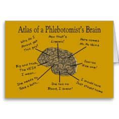 phlebotomist funny quotes | Atlas of a Phlebotomist's Brain Greeting Cards from Zazzle.com