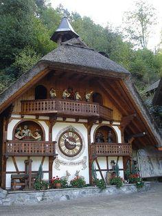 coisasdetere:  Black Forest, Germany.