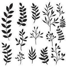 Hand Drawn Tree Branches And Leaves Set Paper Flowers Craft, Flower Crafts, Plant Illustration, Botanical Illustration, Serendipity Tattoo, Flower Drawing Tutorials, Seal Design, Fabric Stamping, Flower Doodles