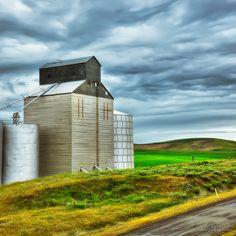 Grain elevator N. of Walla Walla, WA