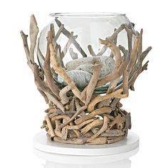 driftwood container too hold a bowl