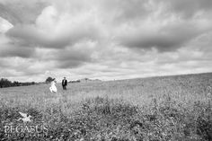 Auckland Wedding Photography couple in field - Pegasus Photography