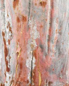 Lucie Groom - tree textures Groom, Texture, Jewellery, Abstract, Artwork, Painting, Inspiration, Jewelery, Work Of Art