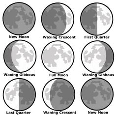 Identifying the Moon's Phases | Earth space
