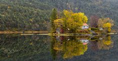 Beautiful reflections of autumn trees on a island. Autumn Trees, Beautiful Images, Awesome, Amazing, Norway, Landscapes, Island, Fall Trees, Paisajes