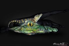 Florida Wildlife Series Body Painting Art - by Shannon Holt