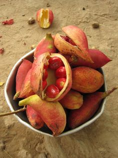 tabacoumba, african fruit - want to taste this. Still so many fruits to try..
