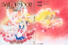 The Original Picture Collection, Cover. For a long time I had been intent on drawing Usagi and Chibi-Usa against a red background with some flowers for the cover of the second volume. I prefer the characters' faces without smiles. I like their expressions and poses, as well as the colors of the whole picture.