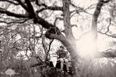 what?! engagement in a tree? alice in wonderland theme? whoa.