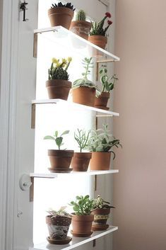 Inspiring Floating Window Plants Design Ideas 42 The design of a modern minimalist house tends to have limited land. However, the desire to have a comfortable home … Window Shelf For Plants, Plant Shelves, Indoor Window Planter, Kitchen Window Shelves, Garden Shelves, Herb Garden In Kitchen, Kitchen Plants, House Plants Decor, Plant Decor