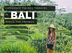 How to experience the Tegalalang rice terraces near Ubud in Bali without the crowds of people