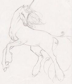 Unicorn by Ynaru