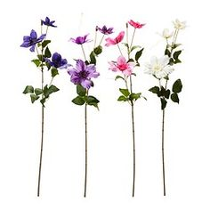 "SMYCKA artificial flower, clematis assorted colors Height: 23 ½ "" Height: 60 cm"