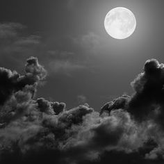 It's pretty rare that Friday the 13th also falls on a full moon....to celebrate we have the WINNERS of our BLAKfriday giveaway!!! Congratulations to @heather19392 and @janelle_domigan! You have each son a $250 BLAK voucher!! Please email sales@blak.co.nz to claim your prize #blackfriday