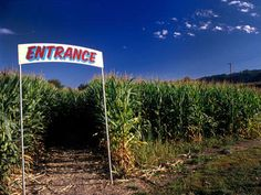 Date Night: CORNFIELD MAZE: Get lost together in a corn maze. After you get out, warm him up with a cup of hot cider and some cuddling.