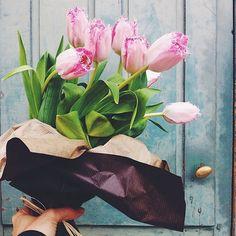 spring bliss .. X ღɱɧღ ||
