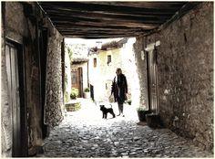 En Potes (Cantabria)  #Miniature #Schnauzer