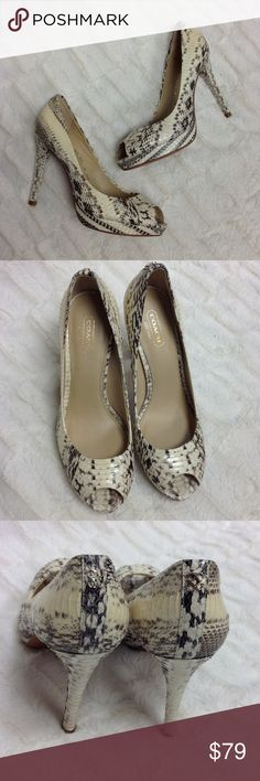 """COACH """"Selma Python Peep Toe"""" B68 🎀 Black/cream snakeskin peep toe pumps by Coach! Heel is about 4.5"""" tall! These gone perfect with jeans or a cute dress to add that sexy pop! The slight platform measures about 3/4"""" tall. ***Gently pre-loved! Lining if interior is like-new, the soles show slight normal wear! Coach Shoes Heels"""