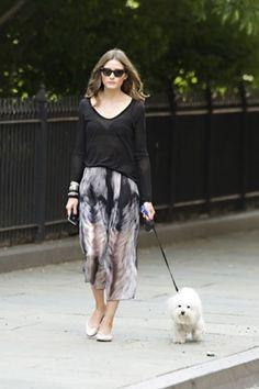 A Fashionista's Furriest Friend... her pup!