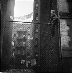 Un bambino lustrascarpe arrampicato su una recinzione (Stanley Kubrick nel 1947 per Look)