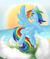 Rainbow Dash by RainbowScreen
