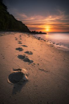 Walk in to The Sun on 500px by Joachim Mortensen, fredericia, Danmark ☀ Sony Nex 5R-f/-13s-16mm-iso100, 1320✱1980px-rating:98.2 ◉ Photo location: Google Maps