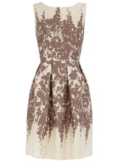 Mocha floral border prom - View All New In - What's New - Dorothy Perkins United States