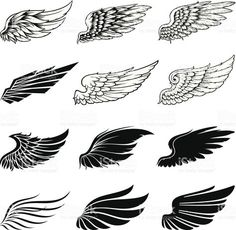 Set of twelve vector wings. The collection includes a simple form of. Set of twelve vector wings. The collection includes a simple form of. Set of twelve vector wings. The collection includes a simple form of the wings and the detailed Wing Tattoo Men, Wing Tattoo Designs, Forearm Tattoo Men, Wing Tattoos, Tatoos, Tricep Tattoos, Tattoos Skull, Animal Tattoos, Tattoo Drawings