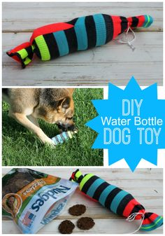 DIY Water Bottle Dog Toy  #NudgeThemBack #ad