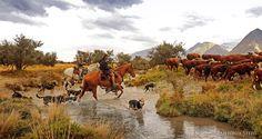 Cattle muster, Lake Tekapo NZ. Antonia Steed