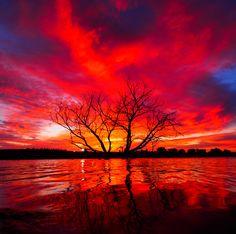 Stunning sunset in Papillion, Nebraska–from LarryD  wunderground.com