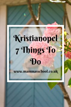 Kristianopel - 7 Things To Do – Mamma's School Swedish Flag, Swedish House, Cosy Cafe, Stuff To Do, Things To Do, Fragrant Roses, Castle Ruins, Old Street, Interesting History