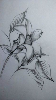 40 Easy Flower Pencil Drawings For Inspiration Easy Pencil Drawings, Pencil Drawings Of Flowers, Flower Art Drawing, Dark Art Drawings, Floral Drawing, Art Drawings Sketches, Cute Drawings, Flower Sketch Pencil, Pencil Sketch Drawing
