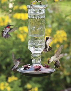 Antique Glass Hummingbird Feeder - Love it! Glass Hummingbird Feeders, Humming Bird Feeders, Next Garden, Dream Garden, Love Birds, Beautiful Birds, Antique Glass, Wild Birds, Recycled Glass