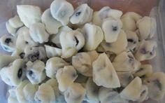 frozen blueberries w yogurt - Great healthy snack idea for school lunches