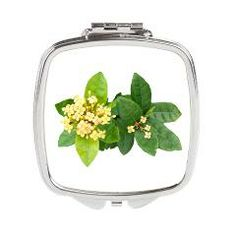 Yellow Ixora Flowered Square Compact Mirror> Jewelry & Accessories> Lisa Williams Art