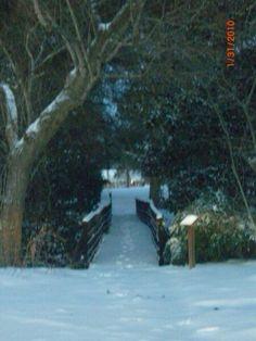 Foot Bridge to Williams St. Murfreesboro, NC.