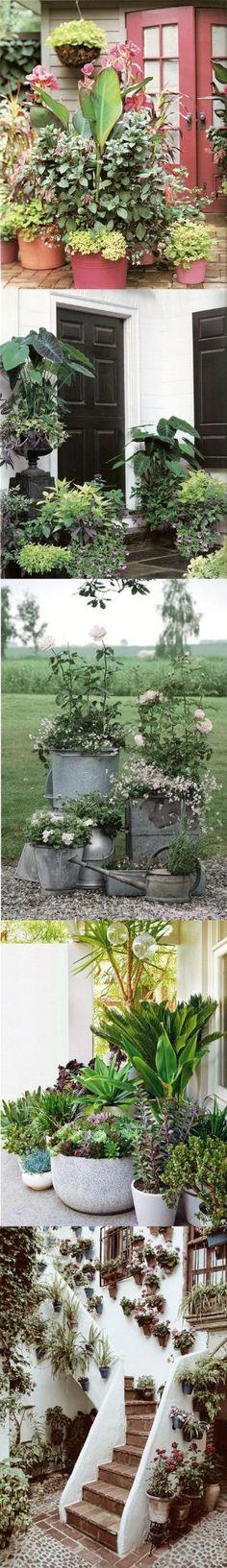 container-garden by ritasummerrose