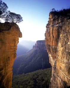 Grose Valley, Blue Mountains, NSW australia