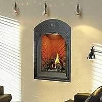 Napoleon GD82 Park Avenue Direct Vent Gas Fireplace