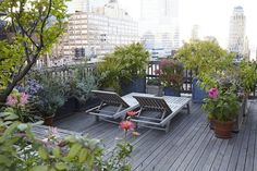 New York || Lovely Rooftop Garden of Vanity Fair Art Director Julie Weiss in Manhattan