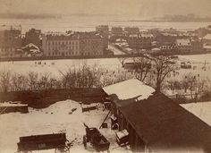 Warszawa – widok ze skarpy na Powiśle, 1870