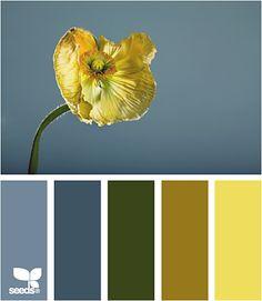 Leftie Paint Color Schemespaint