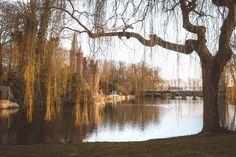 Amazing, beautiful must-sees when in Bruges, Belgium. #travel #belgium #bruges