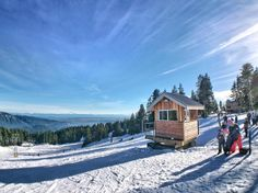 A sunny day on the slope on Mount Seymour - Vancouver  iPhone  Olloclip lens Re-post by Hold With Hope