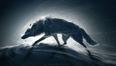 Art by Wenqing Yan Yuumei The wolf