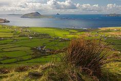 Blasket islands, Kerry, Ireland.